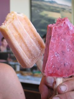 Apricot & Plum Popsicles from Frog Hollow Farm: Ferry Building, San Francisco
